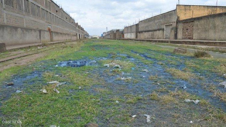 NEMA shuts five companies over pollution