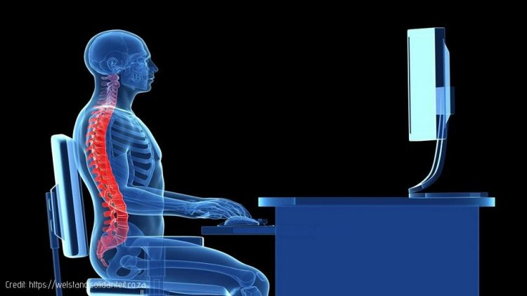 Why Ergonomics must be Part of any Workplace Wellness Plan