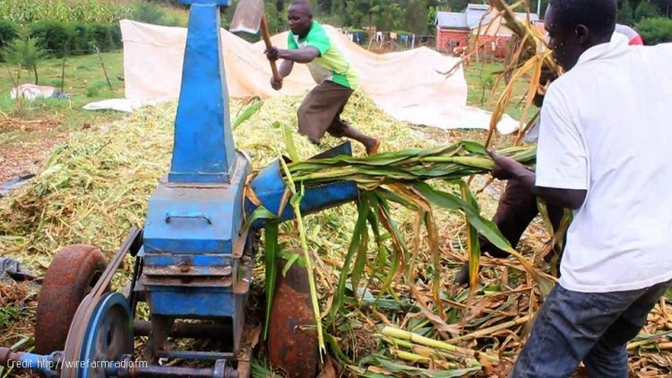 The Safety of Farm Machinery in Kenya