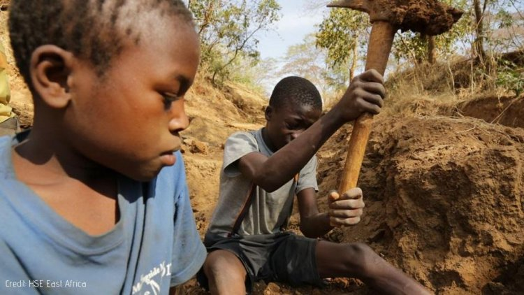 73 Million Children involved in Hazardous Work - ILO