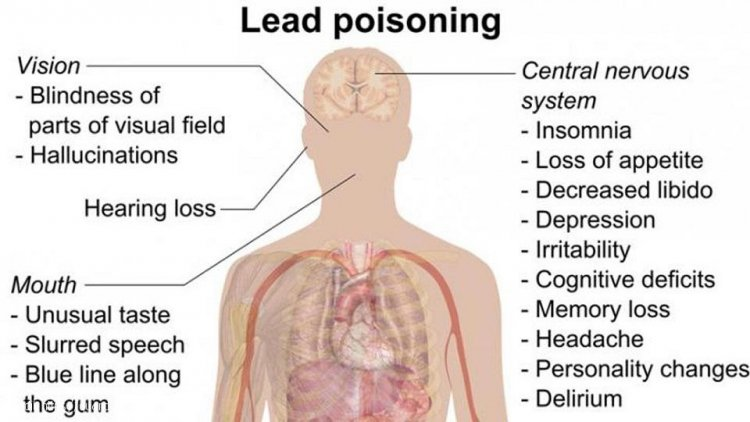 Action Needed to Stop Lead Poisoning
