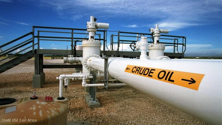 Top Conservationist Involved in Routing of Kenya Oil Pipeline