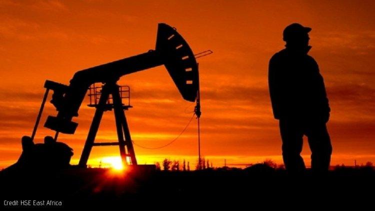 Tanzania signs Oil Exploration Deal with Uganda